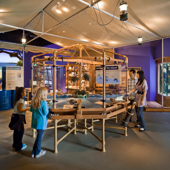 Families interact with exhibits in Ecosystems' Island Zone, featuring a tropical fish tank and island imagery